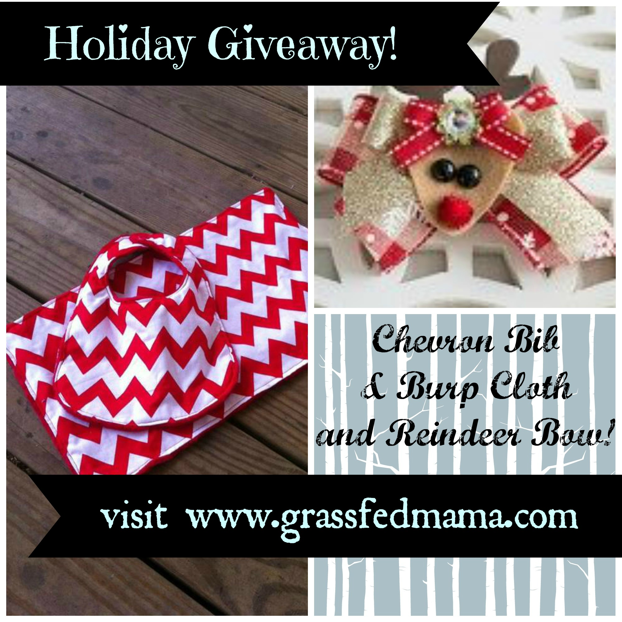 Holiday Giveaway Grassfedmama.com