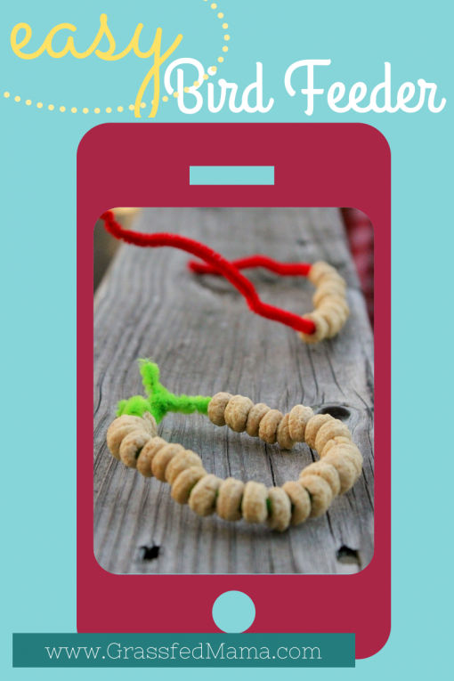 easy toddler craft, easy preschool craft, cheerios craft, pipe cleaner craft, bird feeder craft