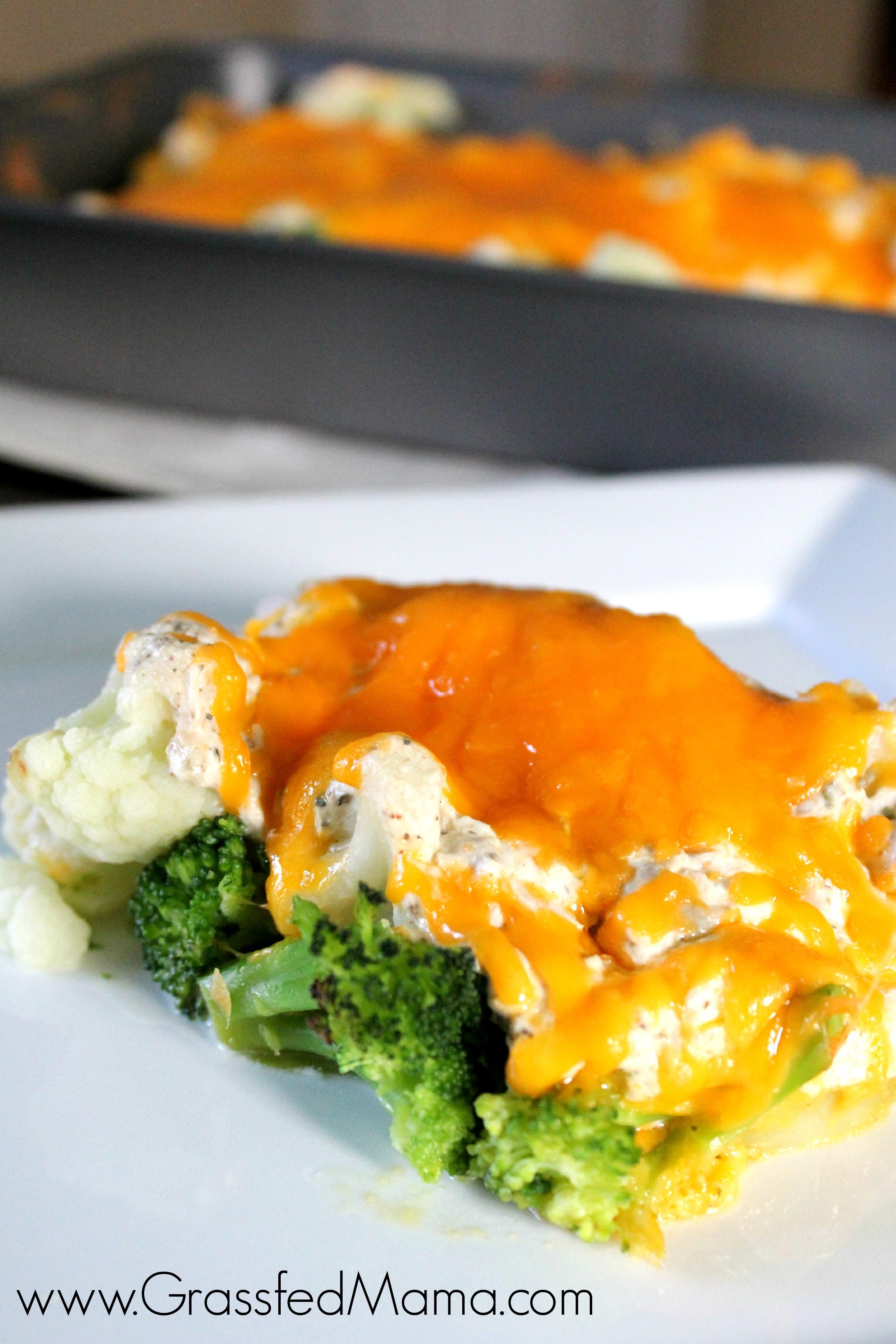 Low carb broccoli tuna casserole bake grassfed mama for Carbs in tuna fish