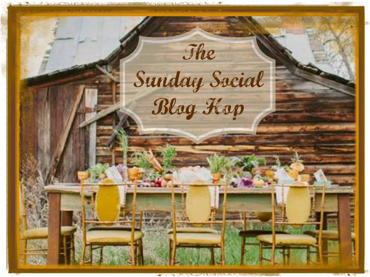 sunday blog hop banner