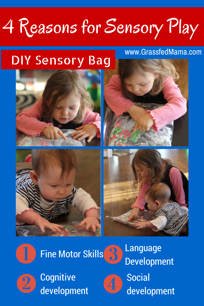 4 Reasons for Sensory Play DIY sensory bag