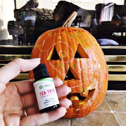 Tea Tree oil helps pumpkins last longer